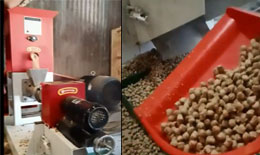 200kg/h Fish Feed Mill Making Machine Sale In Bangladesh